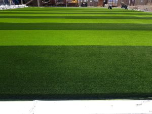 High Quality Artificial Grass for Football and Soccer (W55)
