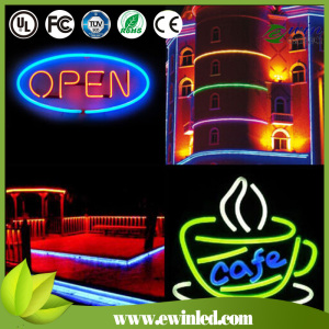 Custom Adversting Sign LED Neon with DC24V