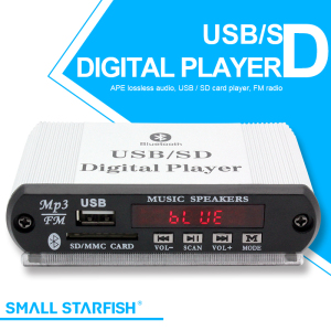 MP3 Onboard Fixed Audio Decoder- (JR-101)