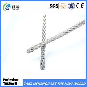 Hot Dipped Galvanized Steel Wire Rope 7X19