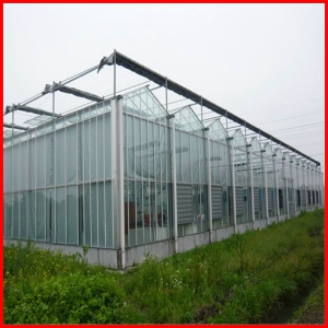 Hot Sale Multi-Span Commerical PC Sheet Garden Greenhouse for Sale