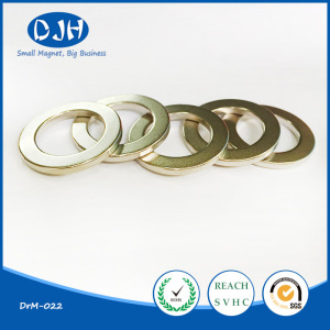 Permanent Sintered Magnetic Material NdFeB Ring Magnet for Motor (DRM-022)