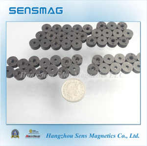 Bonded Ferrite Magnets with Radial 6 Poles Magnetized