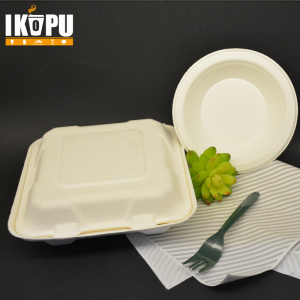 Double Wall OEM Disposable Lunch Box