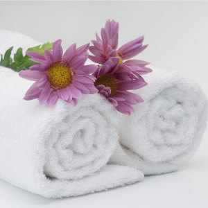 China Manufacturers Supply Super Soft Hotel Bath Towel (DPFT8058)