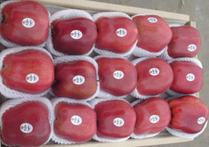 High Quality for Exporting Fresh Huaniu Apple